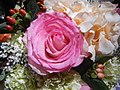 0634jfRefined Bridal Exhibit Fashion Show Robinsons Place Malolosfvf 20.jpg