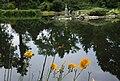 1271aviki Park szczytnicki. Foto Barbara Maliszewska.jpg