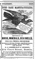 1873 Greenleaf birds CourtSt BostonDirectory.png