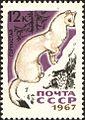 1967 CPA 3538.jpg
