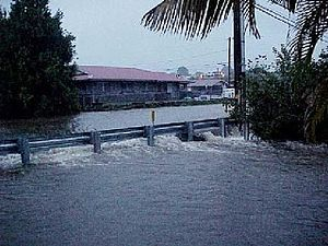 November 2000 Hawaii floods - Flooding along the Alenaio Stream on the Big Island of Hawaii