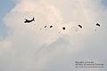 2012년 6월 통합화력전투훈련 (44) (7459139918).jpg