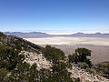 2014-06-29 11 59 39 View southeast from about 9030 feet on the main Pilot Peak, Nevada ridgeline north of Miner's Canyon.JPG