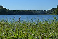 2015-09-28 Rochowsee 018.jpg
