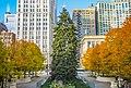 20151205 ChicagoChristmasTree.jpg