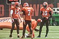 2016 Cleveland Browns Training Camp (28408033480).jpg