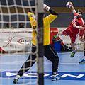 20170112 Handball AUT CZE 6095.jpg