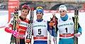 2018-01-13 FIS-Skiweltcup Dresden 2018 (Finale Männer) by Sandro Halank–010.jpg