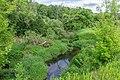 21 Остепненные склоны и балочные леса по правому берегу долины р. Осетрик.jpg