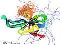 2k5d NMR ensemble ribbons.jpg
