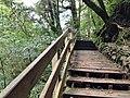 336, Taiwan, 桃園市復興區華陵里 - panoramio (48).jpg