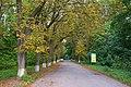 71-251-5001 Velyka Burimka park DSC 2175.jpg