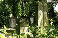 9829viki Cmentarz żydowski na Ślężnej. Foto Barbara Maliszewska.jpg