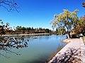ALTURA Argentina Wine Tourism - Mendoza, Lago San Martín, Parque San Martín - panoramio.jpg