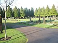 A Saturday lunchtime in December at Eastleigh Cemetery (1) - geograph.org.uk - 1623062.jpg
