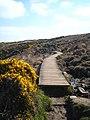 A boardwalk on the South West Coastal Path - geograph.org.uk - 1827431.jpg