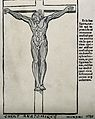 A crucified écorché. Photomechanical print after a woodcut, Wellcome V0007738.jpg