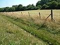 Ackling Dyke - geograph.org.uk - 208470.jpg