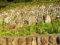 Akagimachi Miyada, Shibukawa, Gunma Prefecture 379-1121, Japan - panoramio (11).jpg