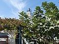 AlManara-LighthouseKeeperHouse TyreSourLebanon RomanDeckert10102019.jpg