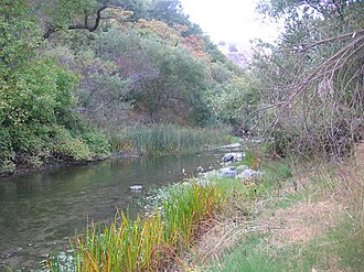 Alameda Creek - Alameda Creek in Niles Canyon