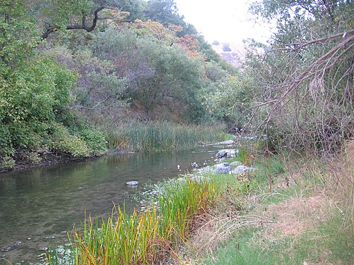 Alameda Creek in Niles Canyon 2626
