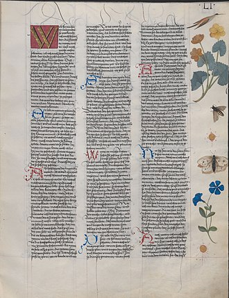 Dietrichs Flucht - Page from the Ambraser Heldenbuch. Fol. 51r. The large initial marks the start of Dietrichs Flucht.