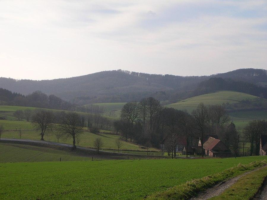 Amelungsburg (Lippe Uplands)