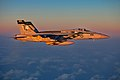 An FA-18E flies over the East China Sea..jpg
