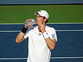 Andy Murray US Open 2012 (21).jpg