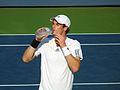 Andy Murray US Open 2012 (21).jpg