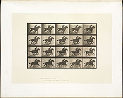 Animal locomotion. Plate 628 (Boston Public Library).jpg