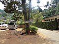 Anniewatta, Kandy, Sri Lanka - panoramio.jpg