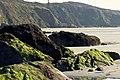 Anse de Morieux - Les falaises.jpg