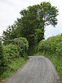 Approaching a summit, Cwmhir Road - geograph.org.uk - 468490.jpg
