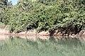 Araguainha - State of Mato Grosso, Brazil - panoramio (1037).jpg