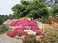 Arboretum Milde15.JPG