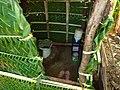Arborloo + EcoPee (4156398101).jpg