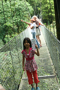 Actual Mistico Arenal Hanging Bridges view.