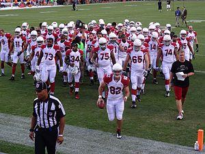 2013 Arizona Cardinals season - Cardinals players during preseason, August 29