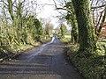 Ashmenagh Road, Maine - geograph.org.uk - 1130656.jpg