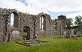 Athassel Priory St. Edmund Nave North Wall 2012 09 05.jpg