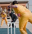 Aussies and Brits hold Ashes match in active war-zone DVIDS353706.jpg
