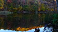 Autumn-trees-lake-reflections - West Virginia - ForestWander.jpg