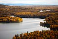Autumn Foliage Denali National Park.jpg