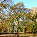 Autumn in Lister Park (8128655507).jpg
