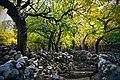 Autumn of Khapplu valley.jpg