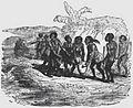 Avventure di Robinson Crusoe - pag 56.jpg