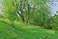 Bad Bellingen Naturschutzgebiet Rütscheten Bild 7.jpg