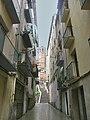 Balaguer campanar a través del carrer de les escales - panoramio.jpg